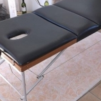 Portable massage table in excellent condition.
