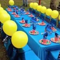 Kiddies Party Decor