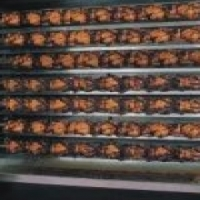 Griller Multiple chicken griller 49 Chickens Large CG497