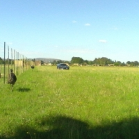 4 Hectare plot for sale in Heidelberg Gauteng