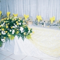 Catering, Cater Hire, Party Hire, Wedding Planning, Function Planning,  Function Hire, Party Plan