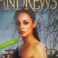 Willow - Virginia Andrews - De Beers #1.