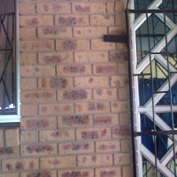 Looking for tenant westcliff chatsworth