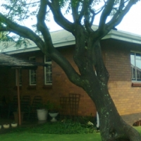 House to rent - Selection Park, Springs