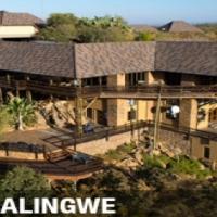 Bushveld holiday for life – Mabalingwe Nature Reserve