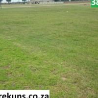 Erwe in Delmas.