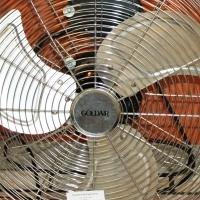 Golden Fan S022840A #Rosettenvillepawnshop