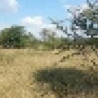 One hectare LEEUWFONTEIN Emacplan Properties