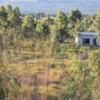 BARGAIN 2,3 ha + house