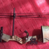 Compound bow,
