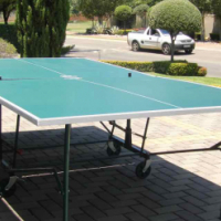 Foldable Table on Wheels for Table Tennis