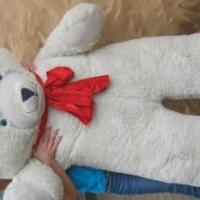 Giant Teddy bear for sale