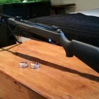 Gamo CFX rifle bargain!! pellet gun