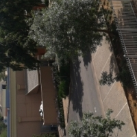 Complex Rumours Bachhelors 24h  Security Opposite Hillcrest Boulevard & Tuks Men's Hotels Rent R4000
