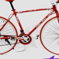 Red & White Retro Bicycle