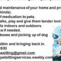 Sue's House and Pet Sitting Service in all area's of Johanneaburg