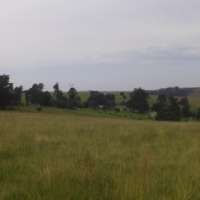 101 ha unique farm for sale in Mooiriver
