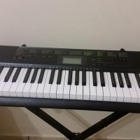 Casio CK1100 Keybord with stand