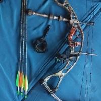 Hoyt Alpha Burner compound bow