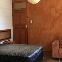 Sunny bachelor flat to rent in Melville