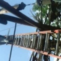 Treefellings & Rubble removal