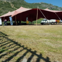 we give better prices on tent sale