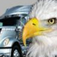 Eagle Fuel Injection Repairs