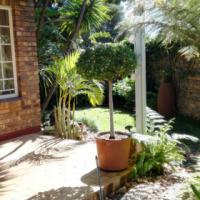 Duplex To Rent In Garsfontein