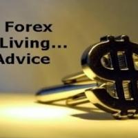 Profit Fx Forex Courses