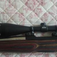 Burris Fullfield ll Rifle scope
