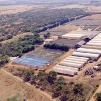 29 ha of bushveld for sale in Kameelfontein