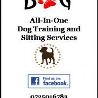 All-In-One Dog Training and Sitting Services