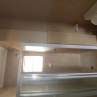 Neat modern Bachelors apartment for rent in Annlin
