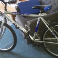 Bicycle Outback Backram.