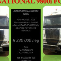 International 9800i Horse For Sale