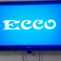 ECCOTV17INCH