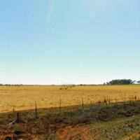 Water rich farm in Potchefstroom area