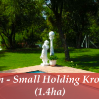 Auction – Small Holding Kromdraai (1.4ha)