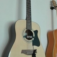 Ibanez 12 String Accoustic Guitar