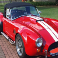 Cobra for sale