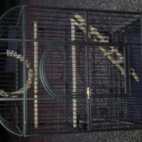 Large Parrot Cage Excellent Condition