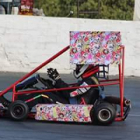 go kart to swop for any other oval car