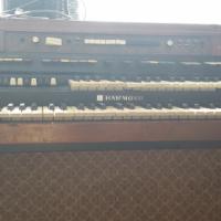 Hammond Orel T524C