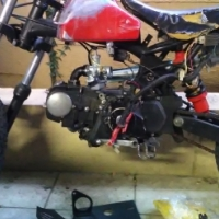 Monster Pitbike for sale