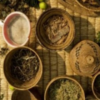 Dr Mondo - Spiritual  Healer