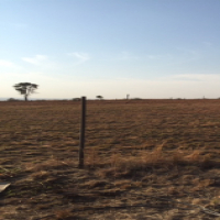 RAW OPEN LAND TO RENT ON PLOT NEAR LANSERIA / JUST OFF MOLEBONGWE DR / Ref 1ha piece