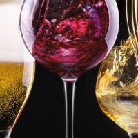 Wine and Craft Beer mobile APP for SALE