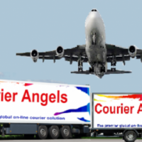 Courier Delivery and Transport Services
