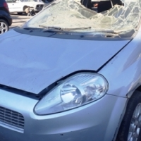 Fiat for sale code 2