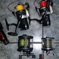 Reels - Shirmono , Salt Water , and more
